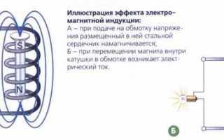 Как сделать оригинальный магнитик на холодильник своими руками дома