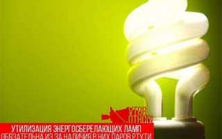 Утилизация люминесцентных и ртутьсодержащих ламп, куда можно сдать энергосберегающие лампочки